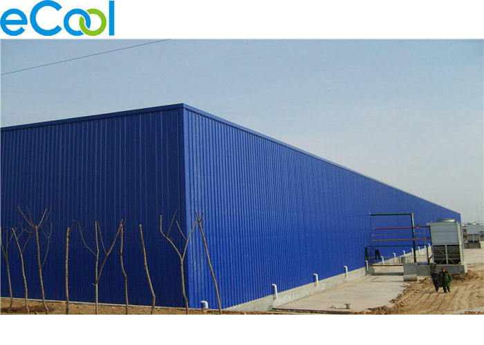0 C ~ 10 C 1000 Tons  Turnover Cold Storage  of Fruits Vegetables with Steel Structure