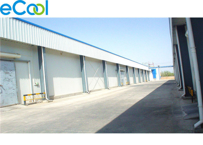 3000 Tons Cold Storage Of Fruits And Vegetables For Apple And Apple Juice Production Factory