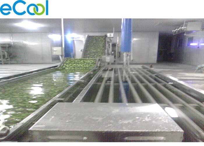 Light Weight Commercial Cold Storage , Cold Storage For Vegetables And Fruits