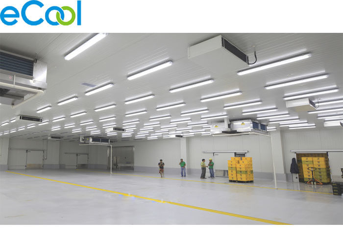 3500 SQM Cold Storage Logistics Of Fruits And Vegetables with  BITZER Refrigeration Compressor