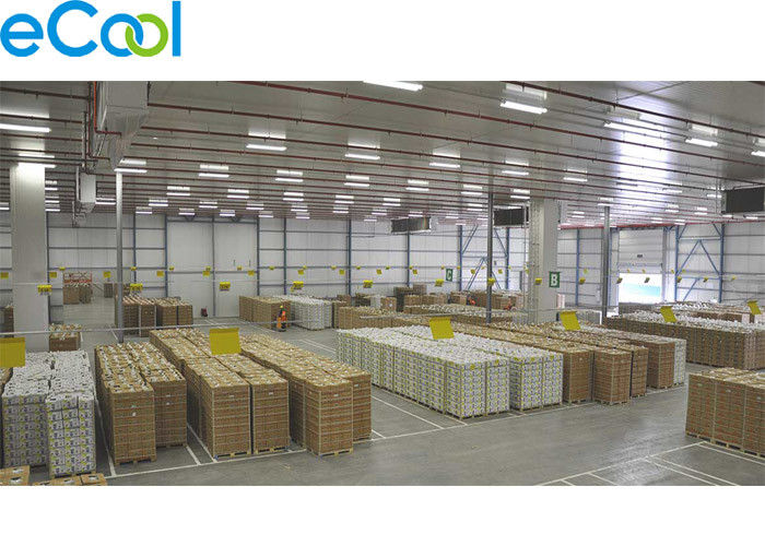 EHT11 Cold Storage Of Fruits And Vegetables , Anti Explosion Lights Cold Storage Fruits Vegetables