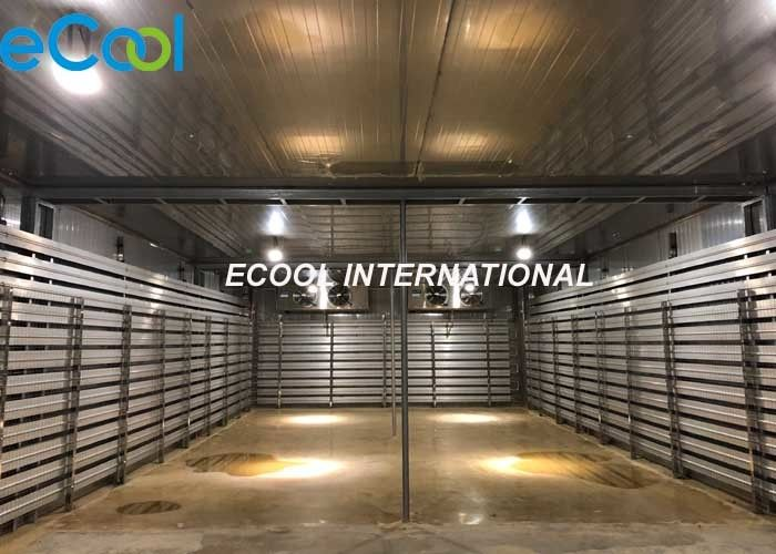 -50~-60 °C Frozen Food Storage Warehouses For Middle Size Cargo Distribution Center
