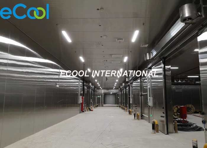 High Reliability Agriculture Cold Storage / Cold Room Freezer 1500 Tons