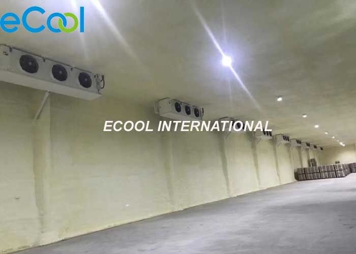 Low Temperature Industrial Cold Storage Fully Automatic Computer Control