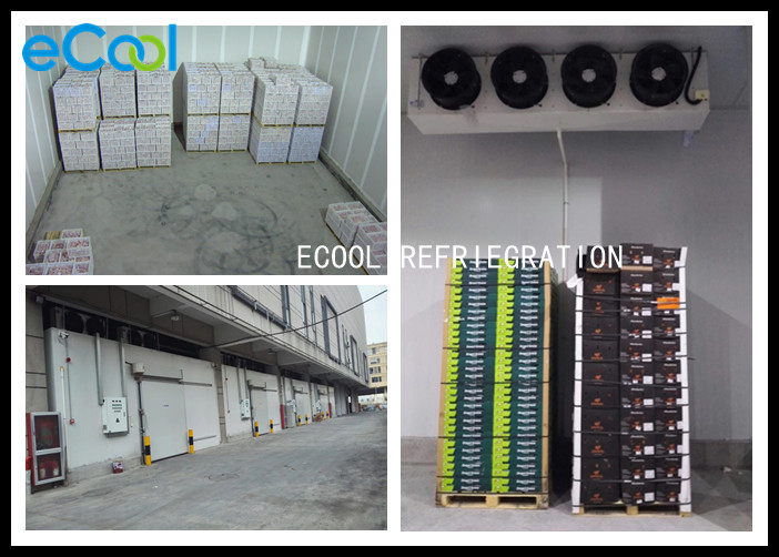 -5 ~ +8℃ Cold Storage System For Fruits And Vegetables Copeland Compressor
