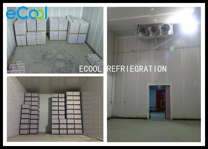 EPS Coolroom Panels Apple Cold Storage , Smart Fresh Apple Storage Room